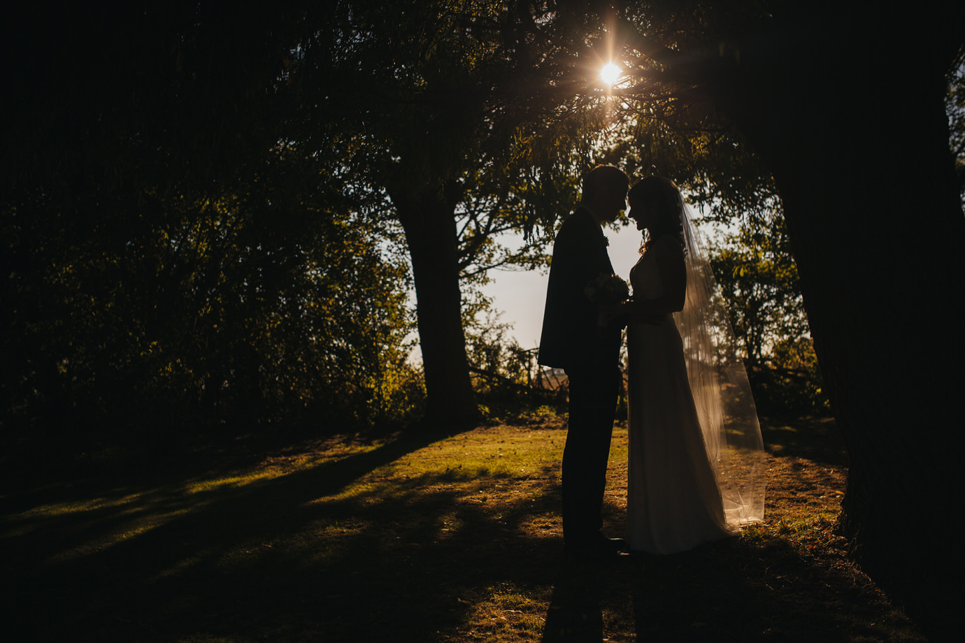 Bride and groom silhouette portrait against a backlit woodland
