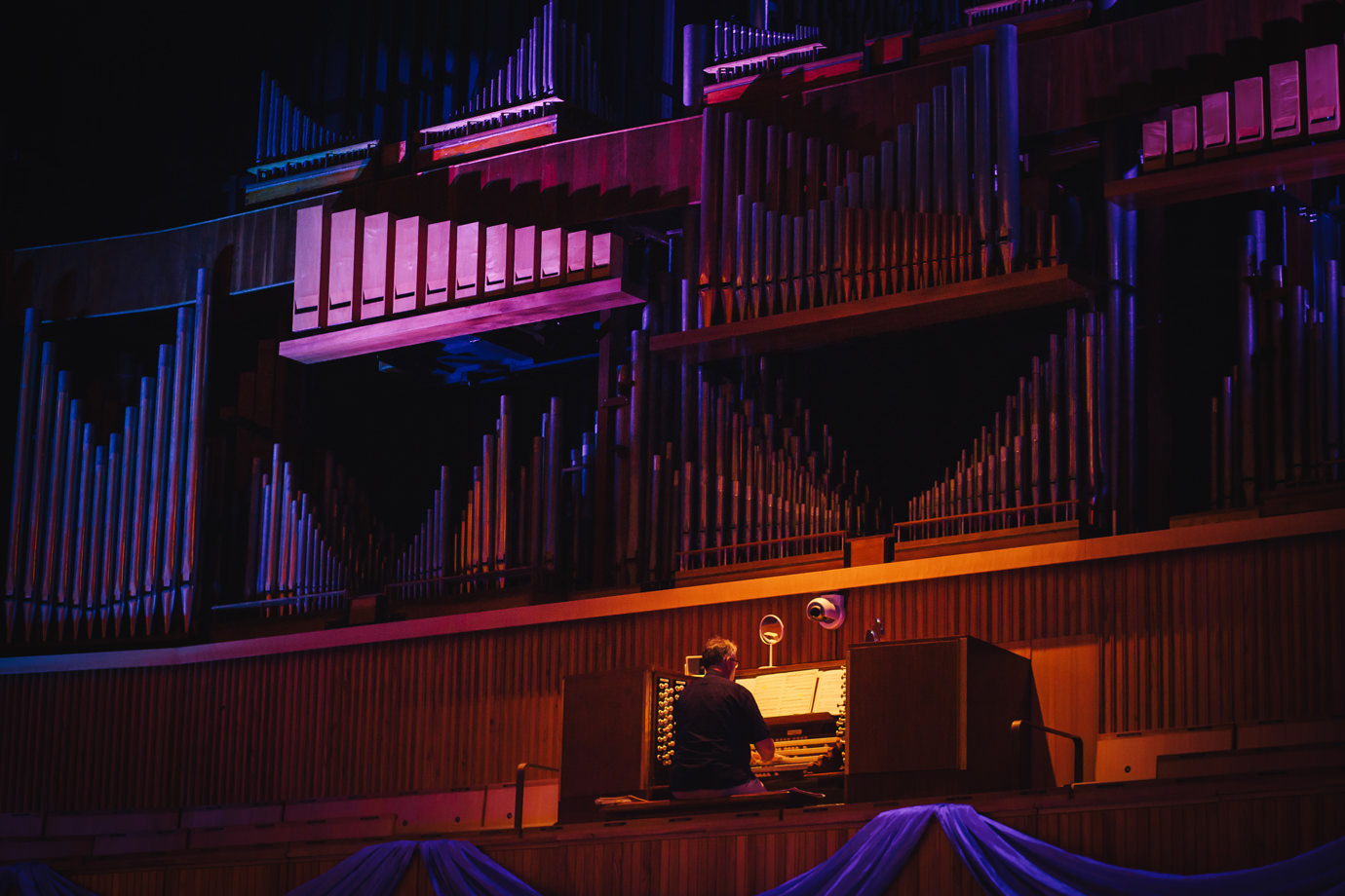 Organist, Royal Festival Hall, Southbank, London
